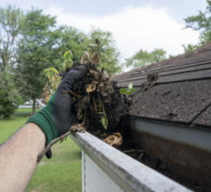 gutter cleaning in Hadfield